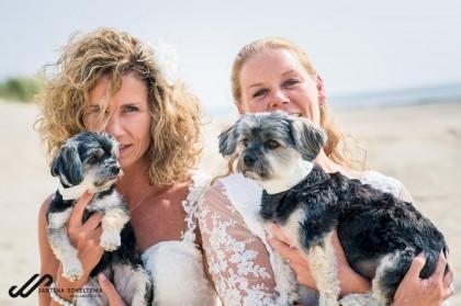Trouwen met bruidshondjes